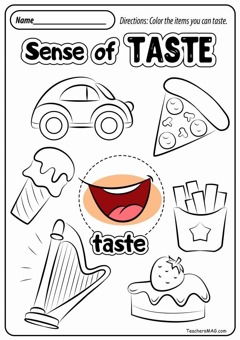 5 Senses Worksheets for Preschoolers Inspirational Free Five Senses Worksheets Teachersmag