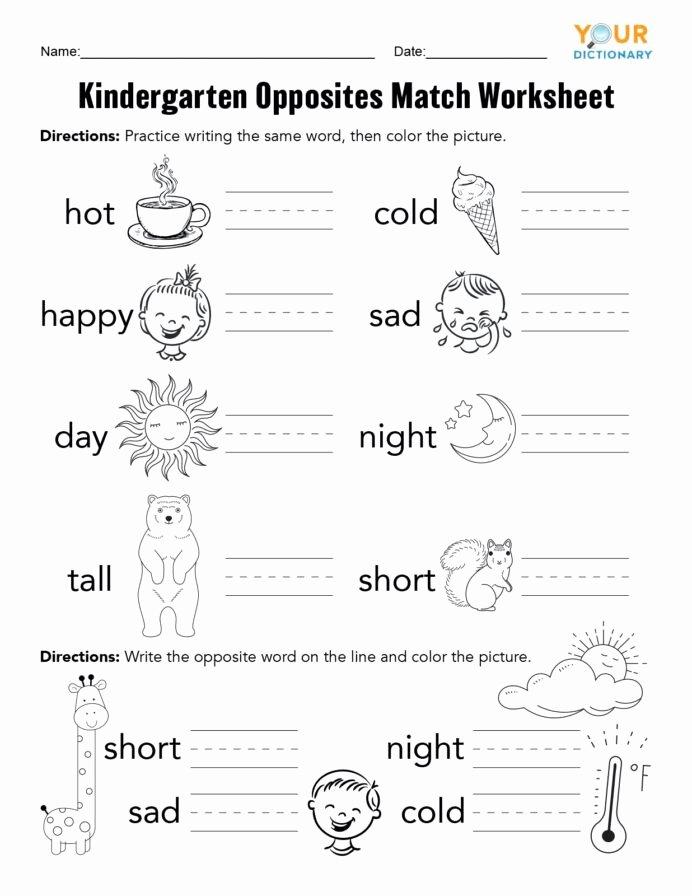 Activity Worksheets for Preschoolers Lovely Coloring Pages Kindergarten Opposites Activities