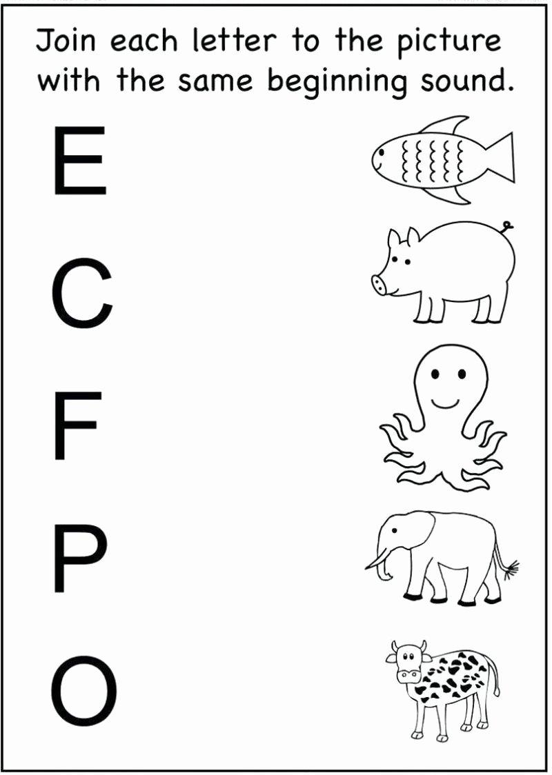 Alphabet Matching Worksheets for Preschoolers Unique Math Worksheet Math Worksheet Excelent Freereschool