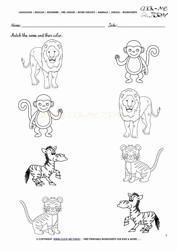 Animal Worksheets for Preschoolers Best Of Jungle Animal Worksheet for Kindergarten In 2020