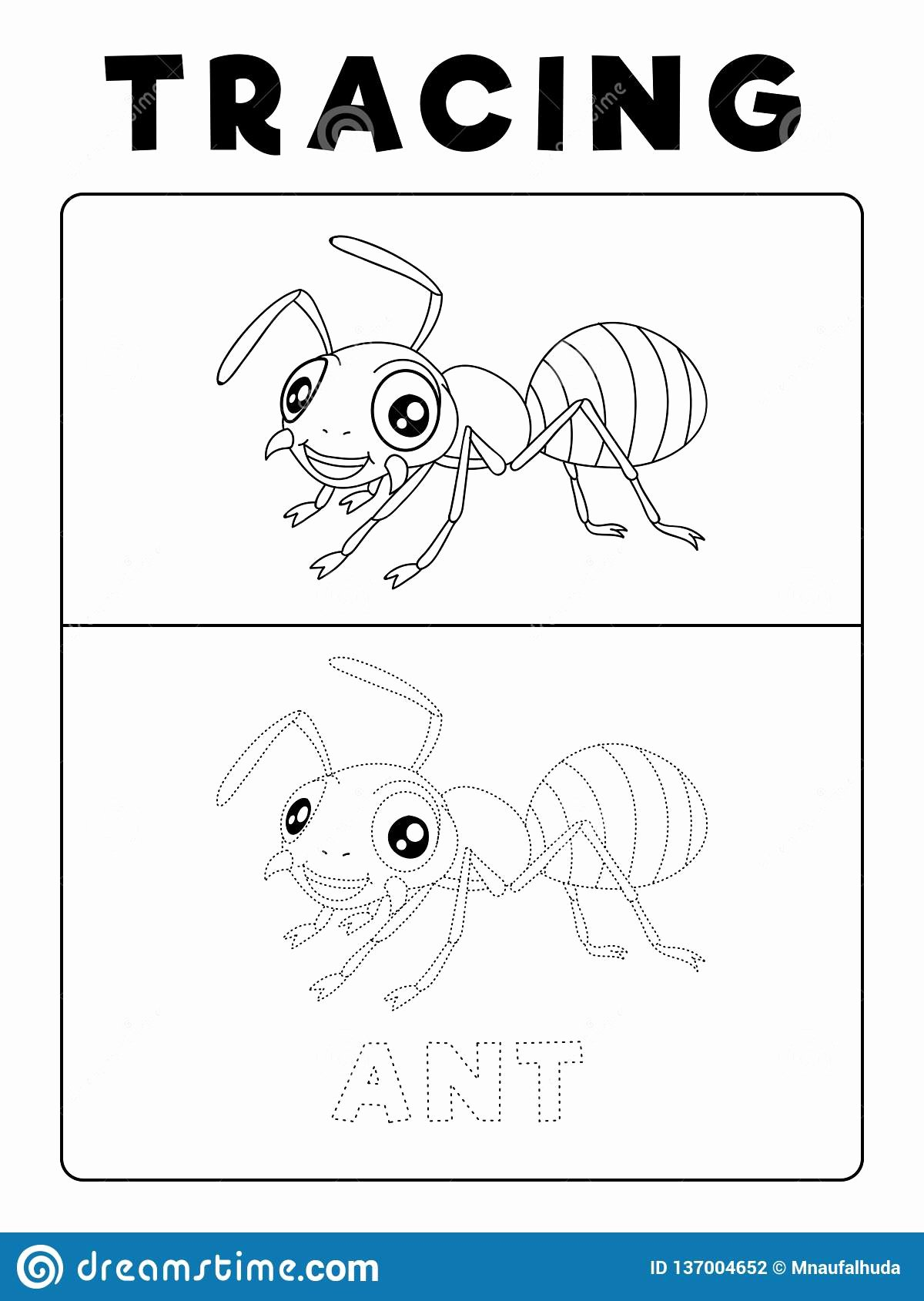 Ant Worksheets for Preschoolers Unique Funny Ant Insect Animal Tracing Book with Example Preschool