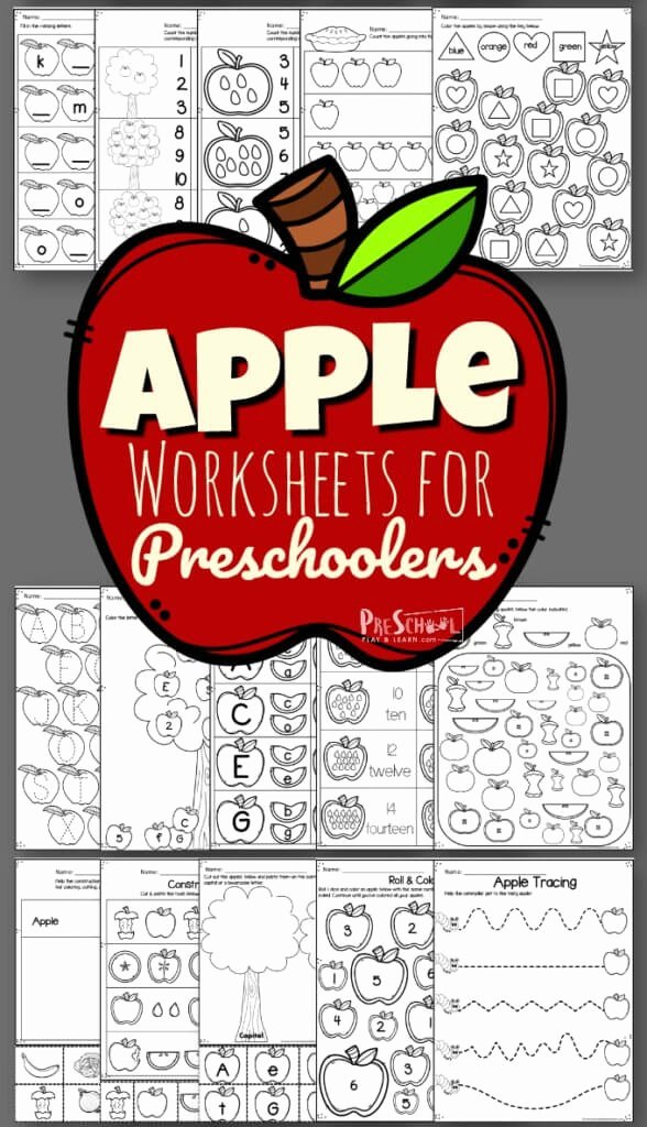 Apple Worksheets for Preschoolers Fresh Apple Worksheet Preschool Pack