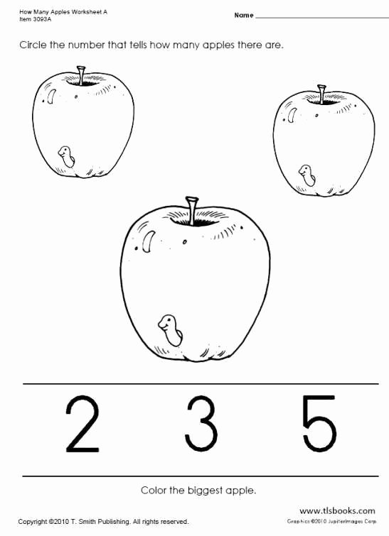 Apple Worksheets for Preschoolers top Many Apples Worksheets Apple Preschool