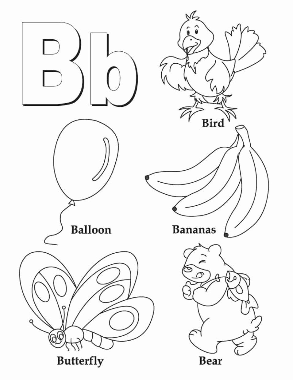 B Worksheets for Preschoolers Fresh Letter B Worksheets to Printable Letter B Worksheets