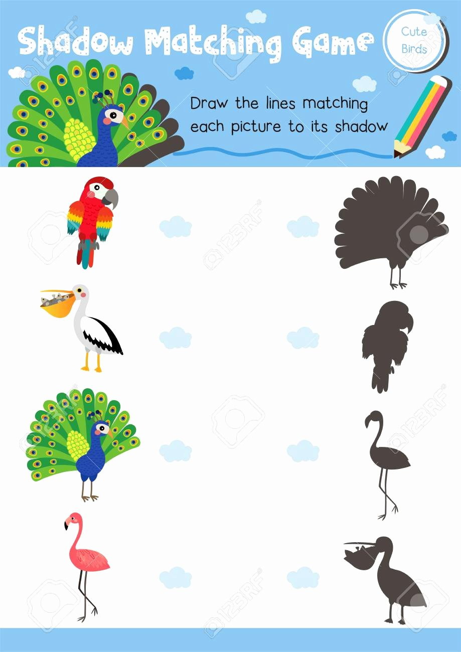 Bird Worksheets for Preschoolers Lovely Shadow Matching Game Of Cute Bird Animals for Preschool Kids