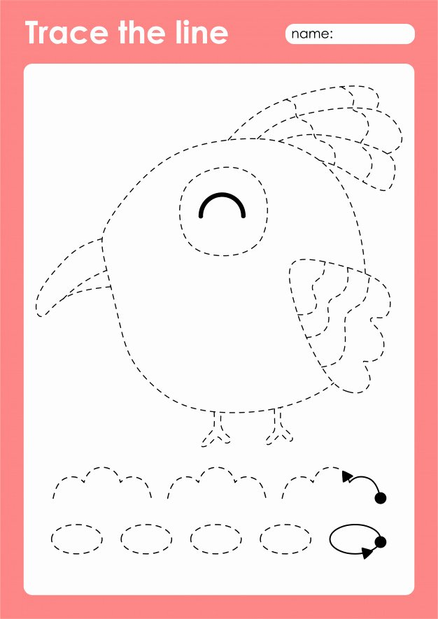 Bird Worksheets for Preschoolers New Premium Vector