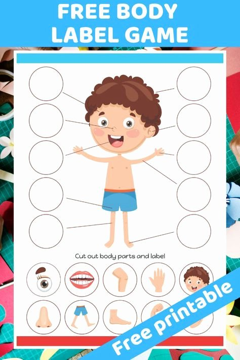 Body Parts Printable Worksheets for Preschoolers Beautiful Pin On My Body
