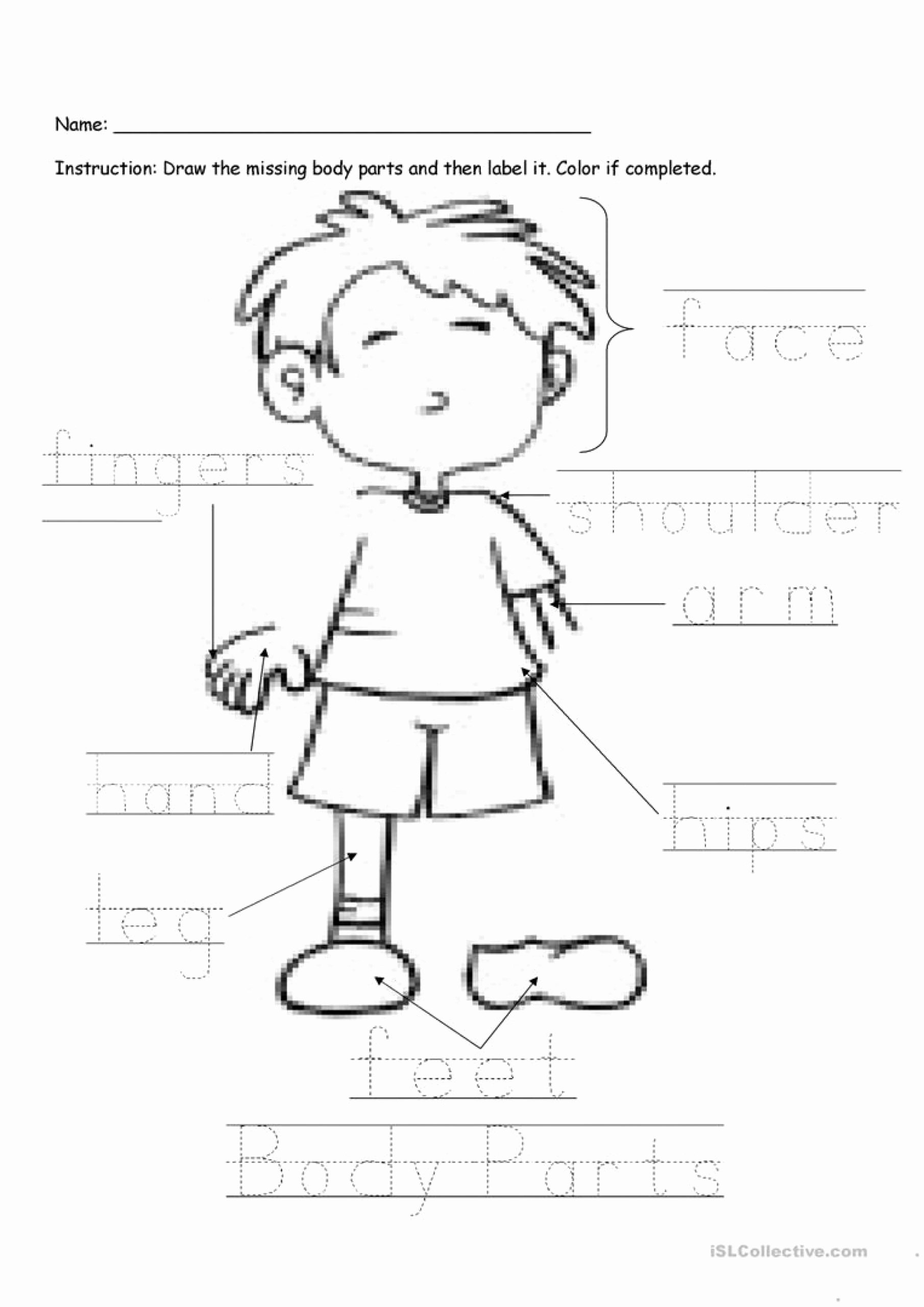 Body Parts Worksheets for Preschoolers New Free Body Worksheets