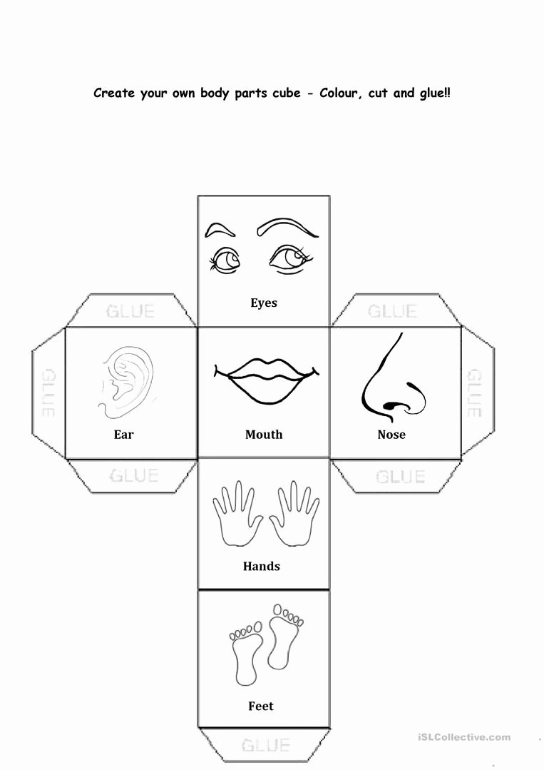 Body Parts Worksheets for Preschoolers New Pin On This is Me