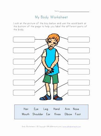 Body Parts Worksheets for Preschoolers top Body Parts Worksheet for Kids