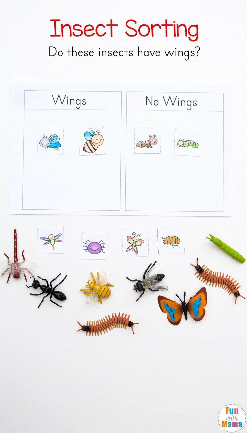Bug Math Worksheets for Preschoolers Best Of Preschool Insect theme sorting Worksheet Bug Activities Fun