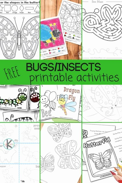 Bug Math Worksheets for Preschoolers Lovely 28 Free Insect Worksheets