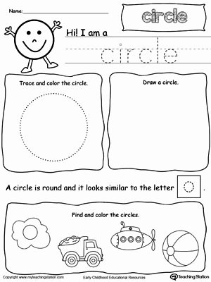 Circle Shape Worksheets for Preschoolers Awesome All About Circle Shapes