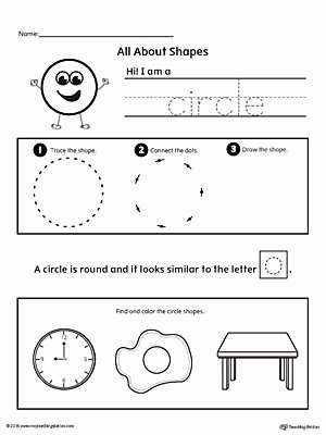 Circle Shape Worksheets for Preschoolers Unique All About Circle Shapes