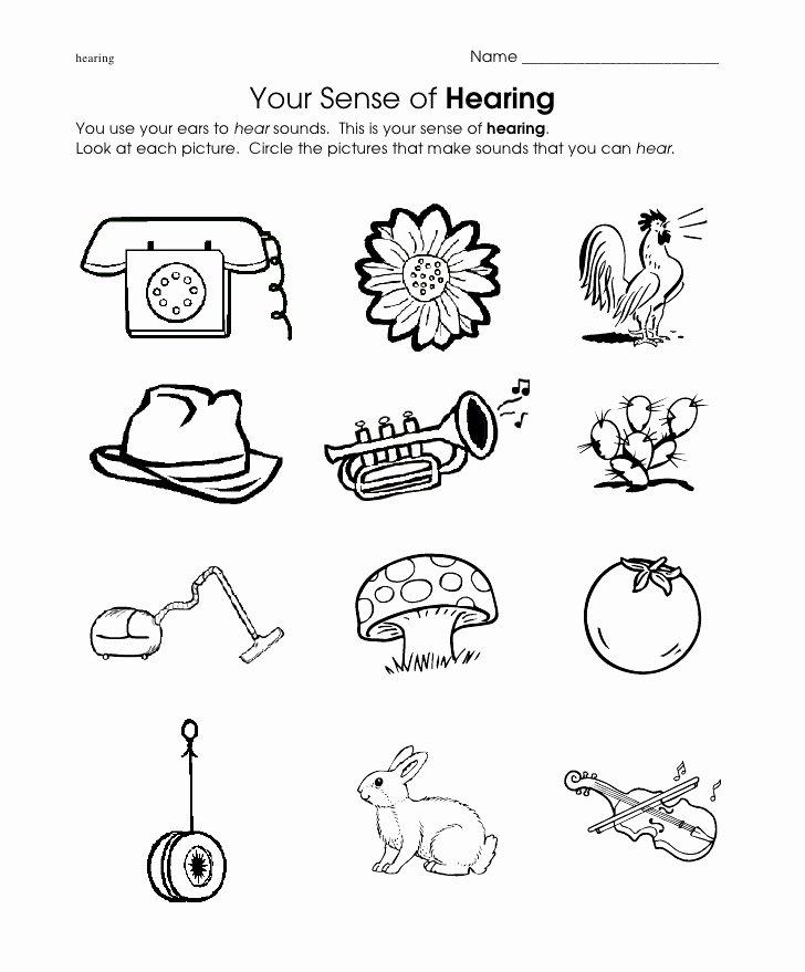 Cognitive Worksheets for Preschoolers Inspirational Hear Worksheet