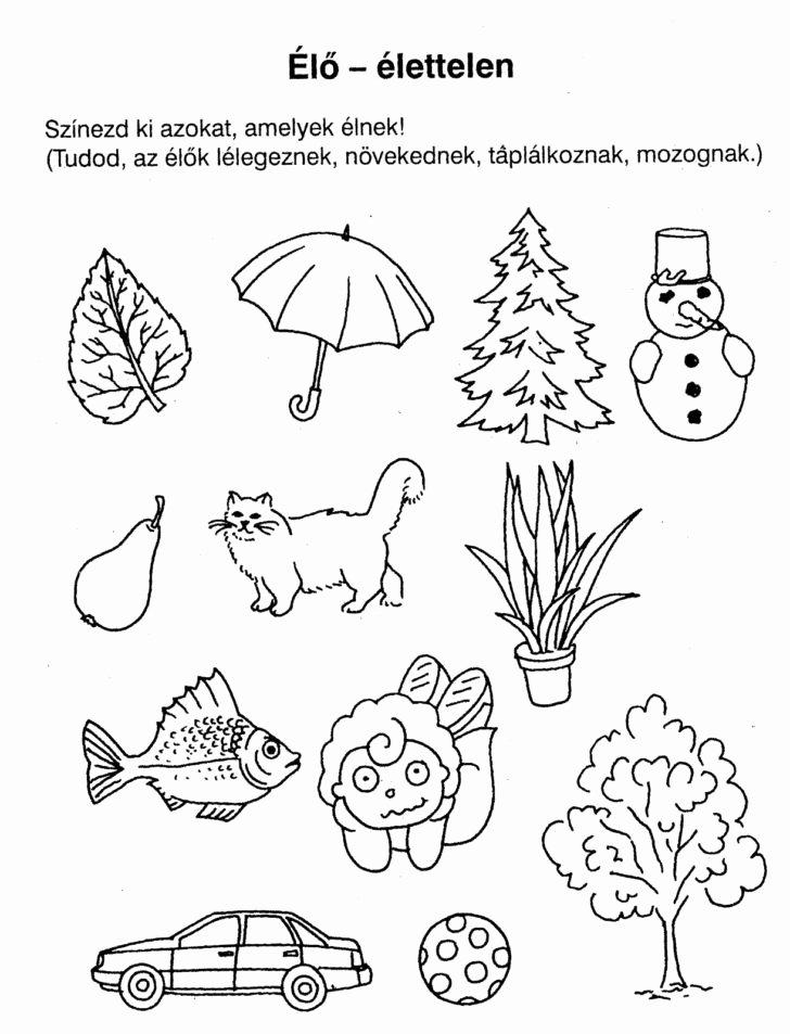 Cognitive Worksheets for Preschoolers New Feladatlapok ³vodásoknak Nyomtathat³ Google Keresés
