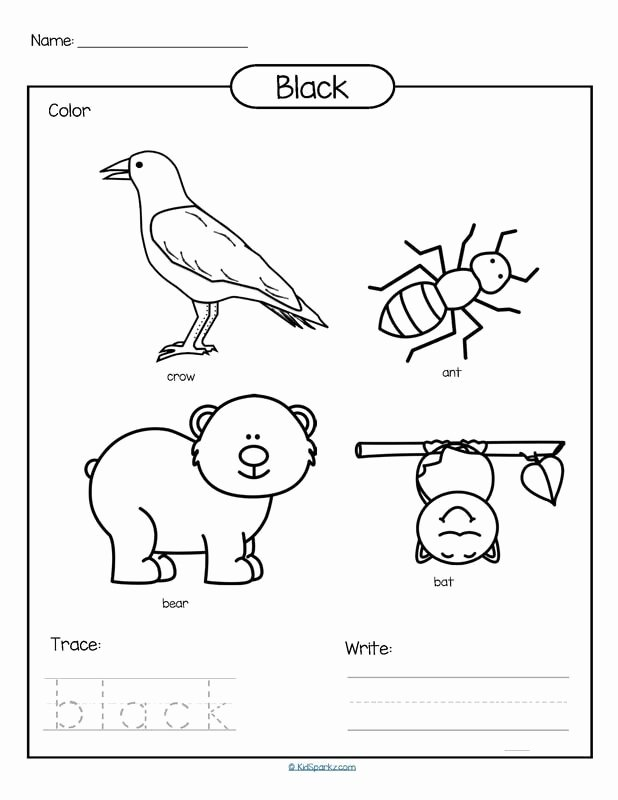 Color Black Worksheets for Preschoolers Best Of Color Black Printable Color Trace and Write