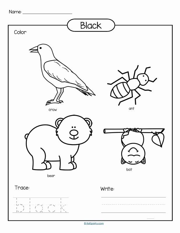 Color Black Worksheets for Preschoolers Best Of Color Black Printable Color Trace and Write