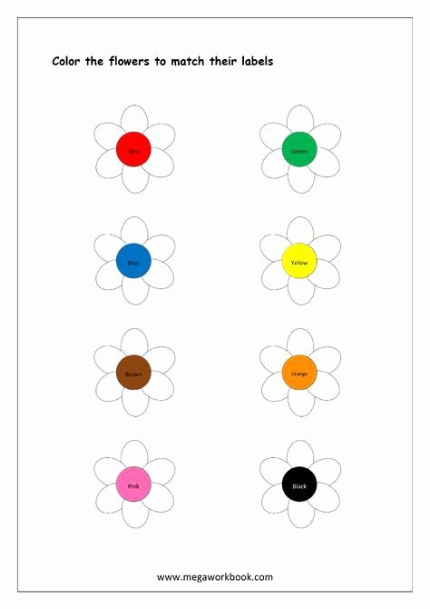 Color Recognition Worksheets for Preschoolers Unique Color Recognition Worksheet Color the Objects Using