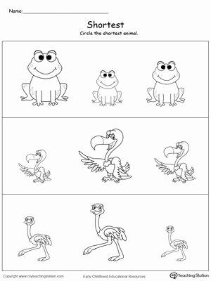 Concept Worksheets for Preschoolers top Shortest Length