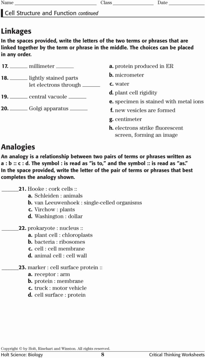 Critical Thinking Worksheets for Preschoolers top Science Biology Critical Thinking Worksheets Pdf Free Skills
