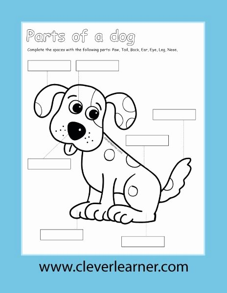 Dog Worksheets for Preschoolers Fresh Kids and Pet Dogs Color and Label