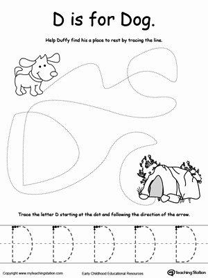 Dog Worksheets for Preschoolers Fresh the Letter D is for Dog