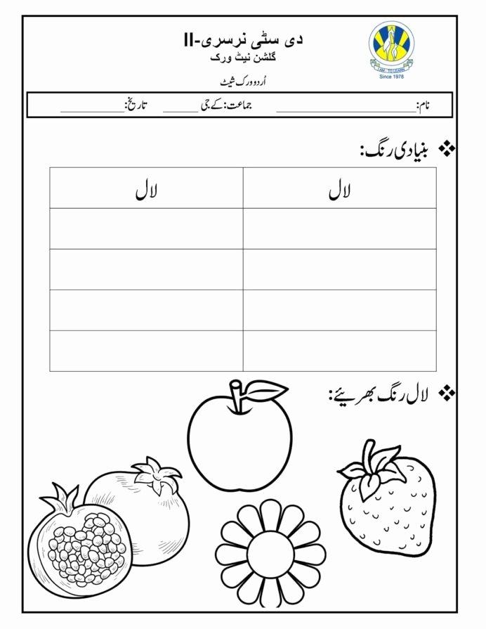 Download Urdu Worksheets for Preschoolers Unique the City School Worksheets Urdu Printable and Percentage for