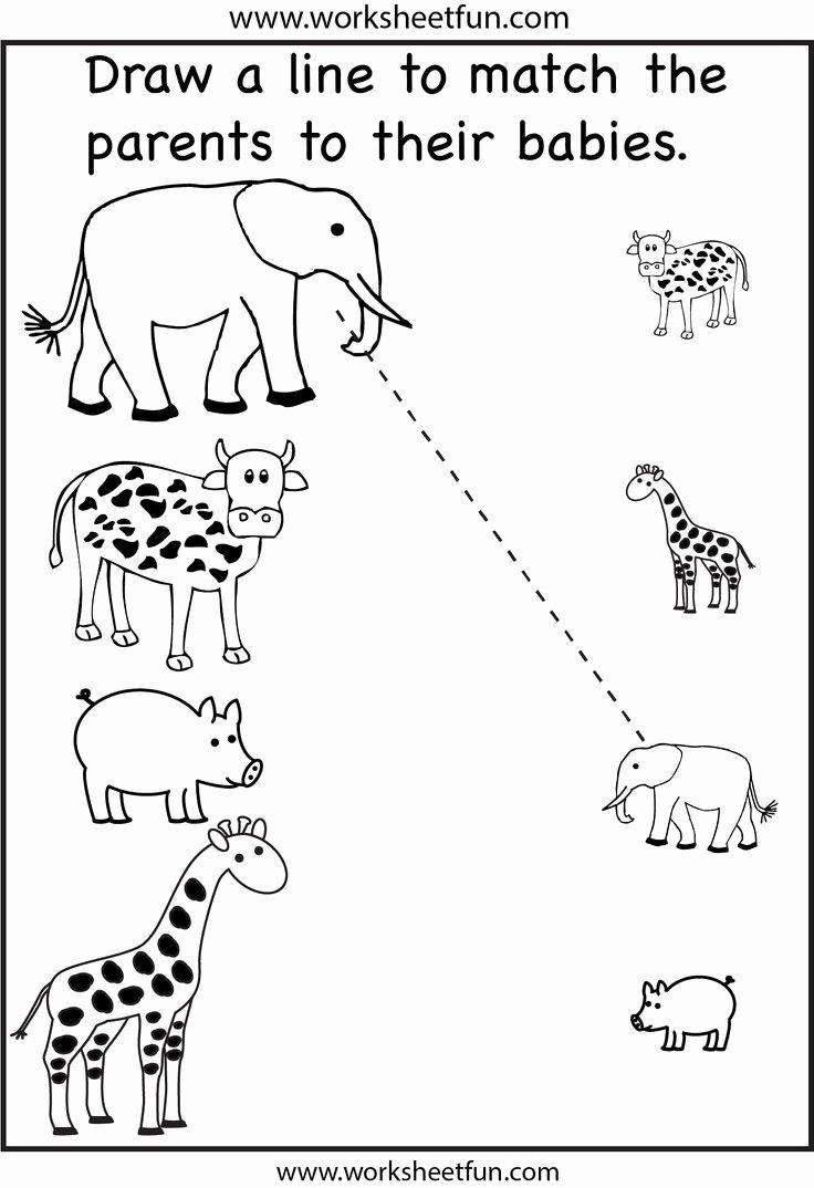 Educational Worksheets for Preschoolers Inspirational Math Worksheet 45 Excelent Educational Worksheets for