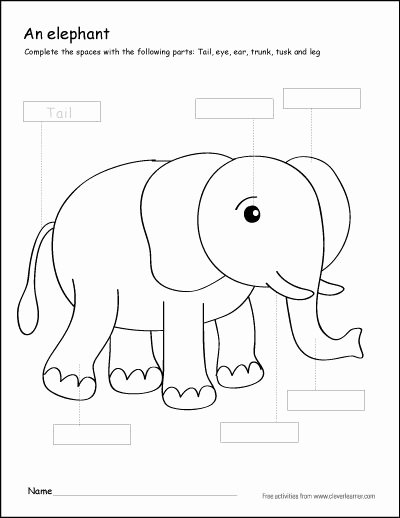 Elephant Worksheets for Preschoolers Beautiful Parts Of An Elephant First Grade Writing and Coloring Sheet