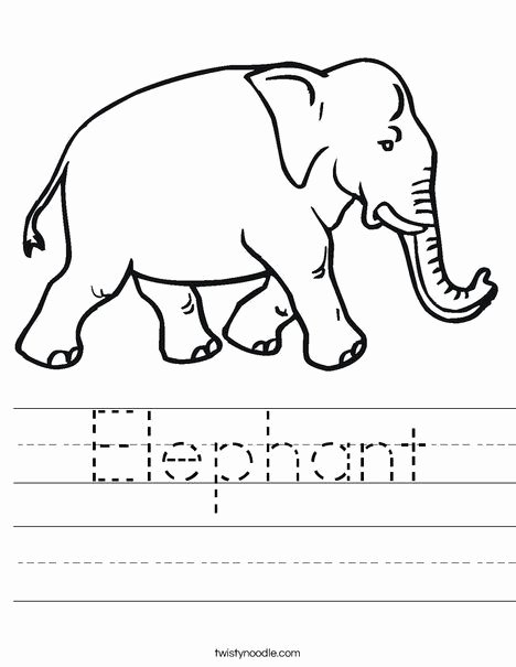 Elephant Worksheets for Preschoolers Best Of Elephant Worksheet