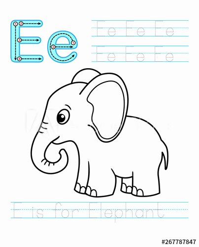 Elephant Worksheets for Preschoolers top Coloring Book Page Printable Worksheet for Kindergarten and