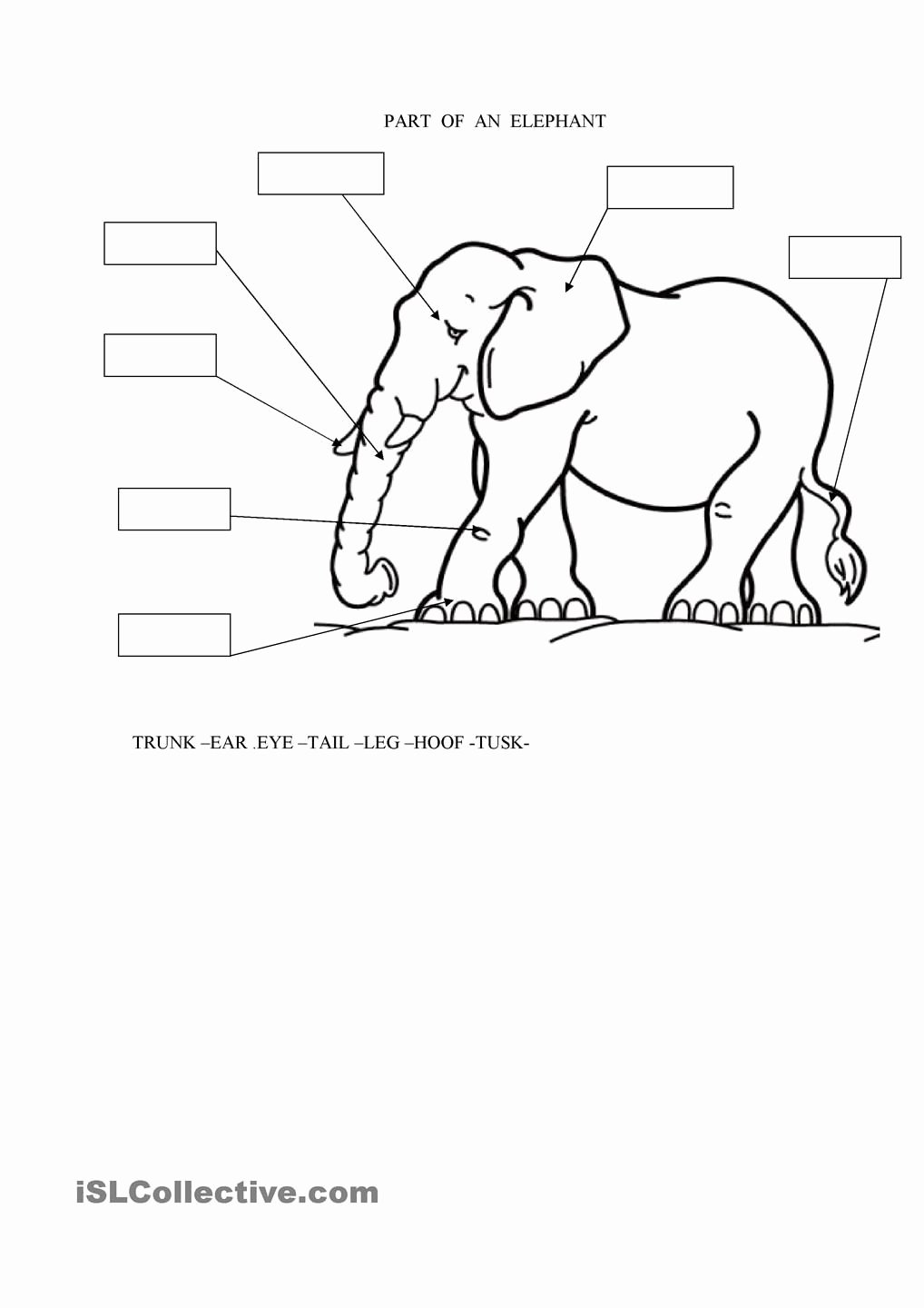 Elephant Worksheets for Preschoolers Unique Parts Of An Elephant