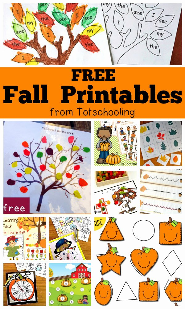 Fall Worksheets for Preschoolers Beautiful Free Fall Printables for Kids