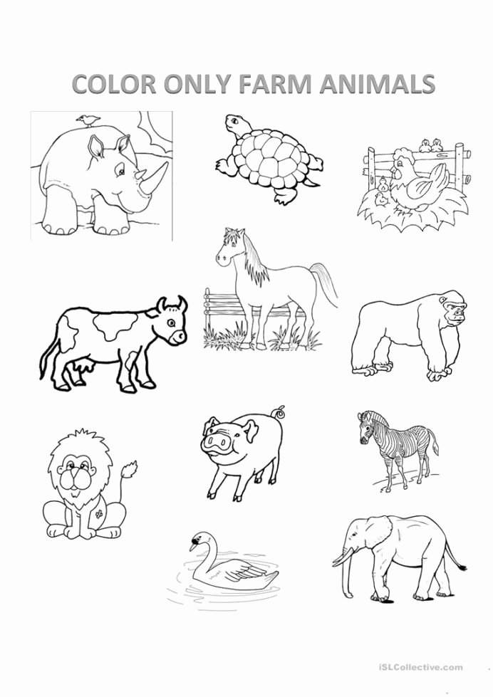 Farm Animal Worksheets for Preschoolers Best Of Farm Animals English Esl Worksheets for Distance Learning