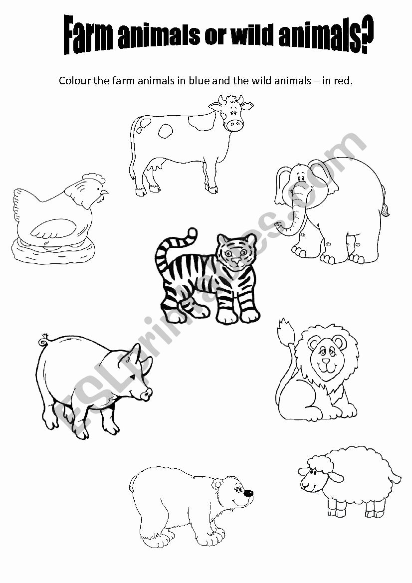Farm Animal Worksheets for Preschoolers Inspirational Farm Animals or Wild Animals for Preschool Esl Worksheet