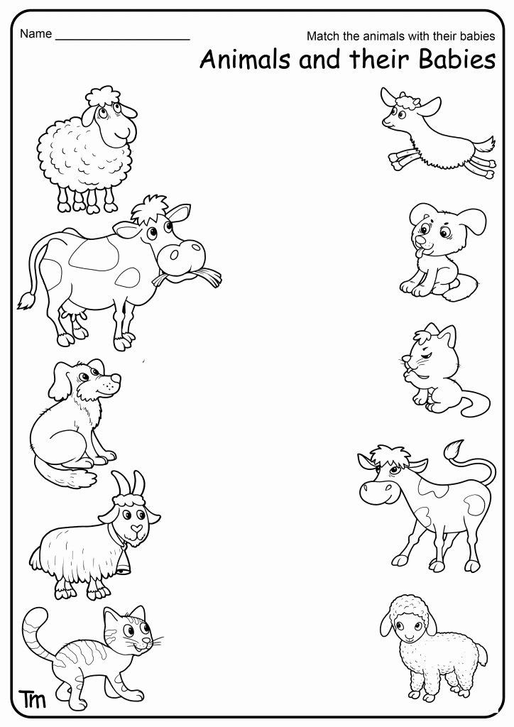 Farm Animal Worksheets for Preschoolers top Free Printable Farm Animal Worksheets for Preschoolers