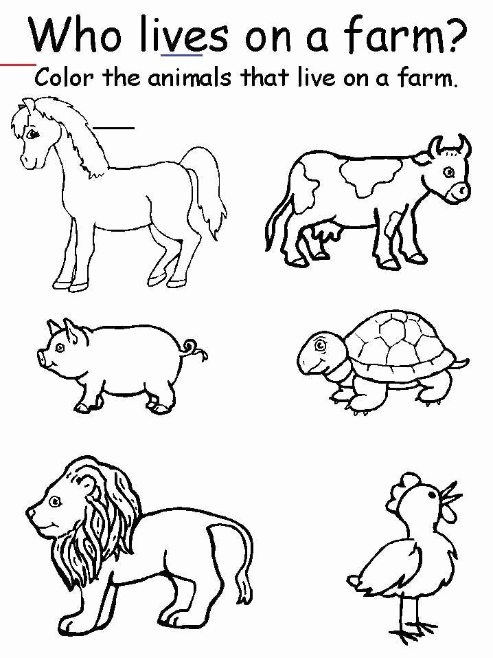Farm Animals Worksheets for Preschoolers Fresh Preschool Printable Farm Worksheets Animal Matching