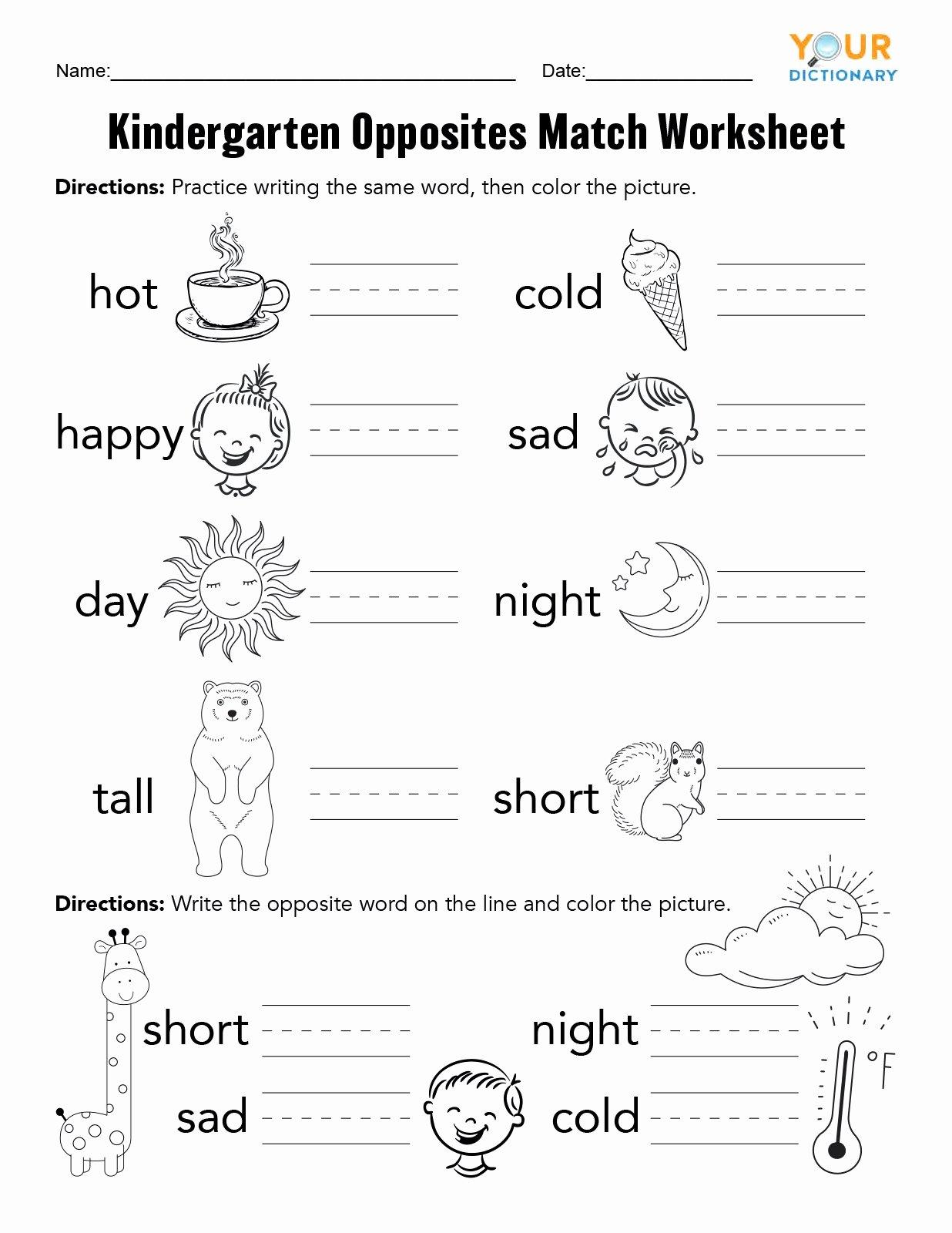 Few and Many Worksheets for Preschoolers New Kindergarten Opposites Activities