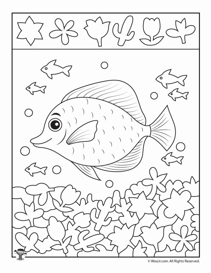 Fish Worksheets for Preschoolers top School Fish Hidden Printable Childrens