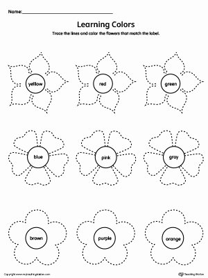 Flowers Worksheets for Preschoolers Unique Learning Colors and Tracing Flowers Worksheet