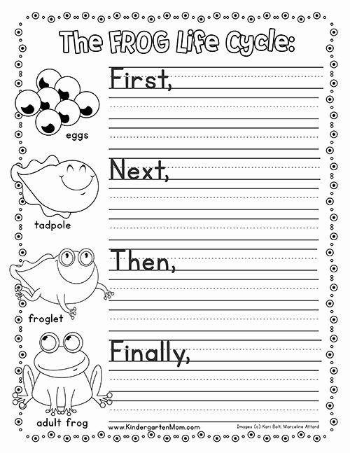 Frog Worksheets for Preschoolers Inspirational Frog Life Cycle Printables Kindergarten Mom