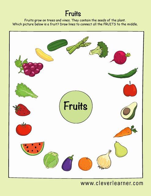 Fruits and Vegetables Worksheets for Preschoolers Awesome Fruits and Ve Ables Preschool Worksheets