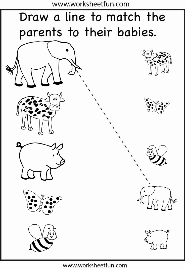 Fun Learning Worksheets for Preschoolers Unique Preschool Matching Printable Worksheet