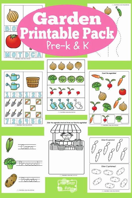 Gardening Worksheets for Preschoolers Beautiful Garden Printable Preschool and Kindergarten Pack