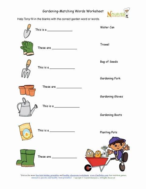 Gardening Worksheets for Preschoolers Best Of Kids Gardening tools Matching Activity Sheet