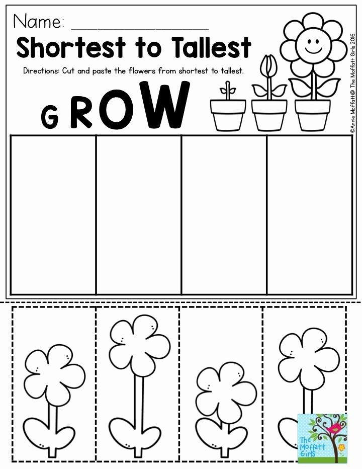 Gardening Worksheets for Preschoolers New Pin On Spring Activities for Kids