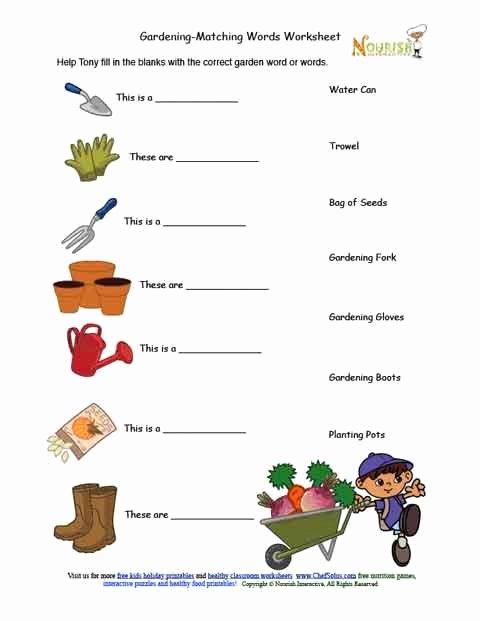 Gardening Worksheets for Preschoolers top Kids Gardening tools Matching Activity Sheet