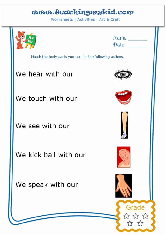 Gk Worksheets for Preschoolers Awesome Kindergarten Learning Match the Body Parts Worksheet General