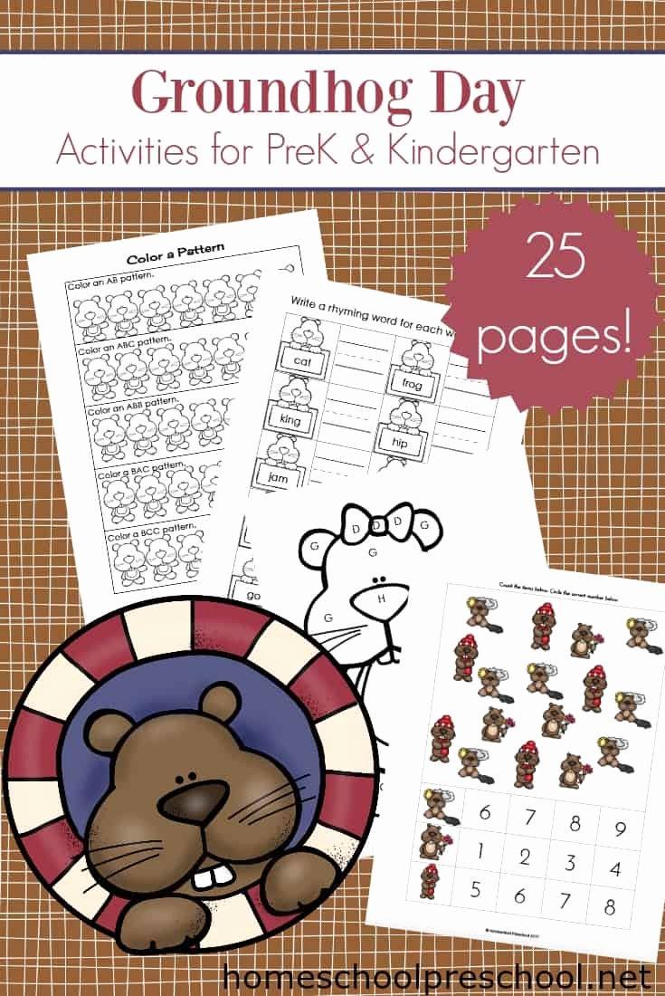 Groundhog Day Worksheets for Preschoolers Best Of Printable Groundhog Day Activities for Preschoolers
